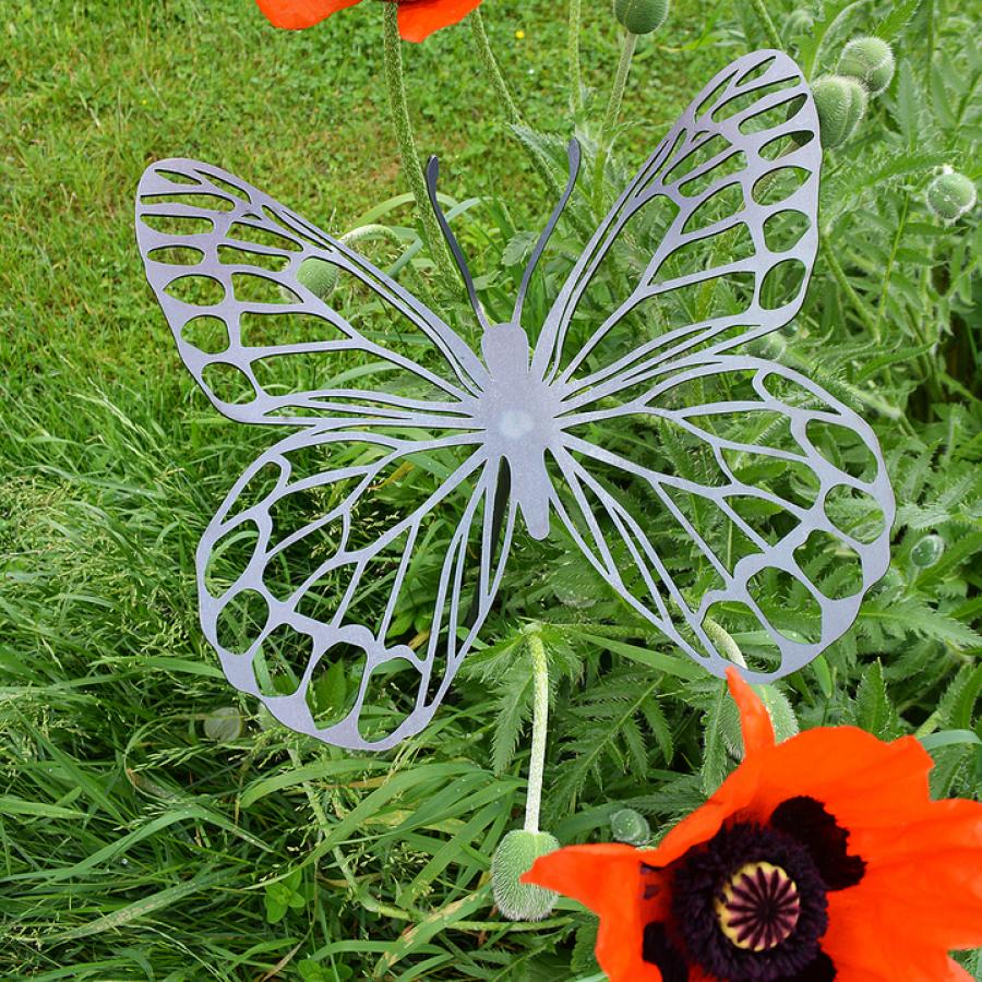 Schmetterling Edelrost